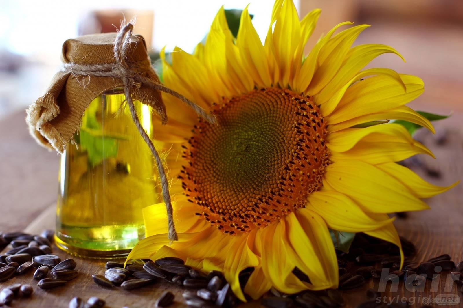 Sunflower Oil for Hair Growth